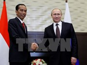 Indonesia, Russia boost bilateral cooperation