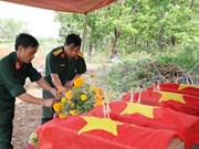 Binh Phuoc steps up search for martyrs' remains