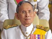 Thailand: King Bhumibol undergoes heart surgery