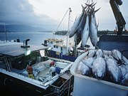 Indonesia bans foreign investment in fishing business