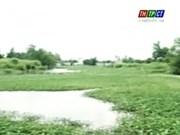 Can Tho: work starts on Bun Xang lake project