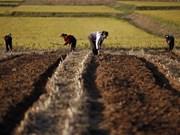 DPRK shifts towards improving people living standards