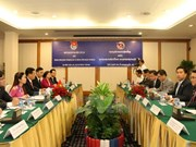 Vietnamese, Lao youths vow to strengthen ties