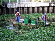 HCM City intensifies anti-pollution, canal cleanup efforts