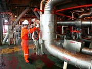 Vietnam, Russia boost links in oil and gas production
