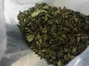 Police bust cross-border drugs ring
