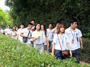 Summer camp for young Vietnamese expatriates