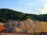 Woodchip exports tumble, numerous difficulties remain