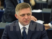 Vietnam, Slovakia enhance trade