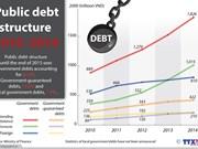 Government debts make up over 80 percent of public debt