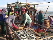 Sea pollution-affected fishermen in Thua Thien-Hue get support