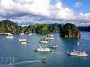 Tourism contributes significantly to Vietnam's economy