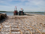 Quang Tri allocates compensation to environmental victims