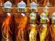 Vietnam among biggest importers of Korean ginseng