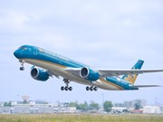 Vietnam Airlines adds nearly 900 flights during Tet holiday