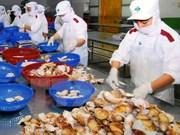 Farming bivalve molluscs for export favourable in Vietnam
