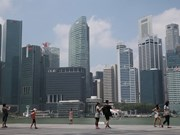 Singapore: PMI grows at slowest pace since late 2012