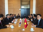 Vietnam, RoK promote cooperation on radiation, nuclear safety