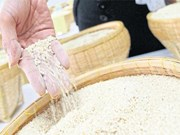 Thailand: January-September rice exports drop