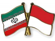 Indonesia, Iran step up multi-faceted cooperation
