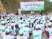 Canon Vietnam launches Shan Tuyet tea tree planting