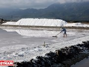 """White snow mountains"" on Hon Khoi salt field"