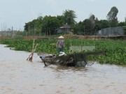 Mekong Delta faces water shortage