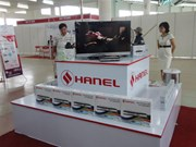 Electronics company Hanel to sell 61 percent stake