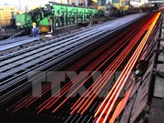 Chinese steel labelled Vietnamese-made for export under examination