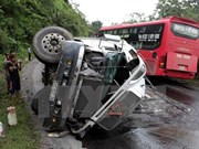 Traffic accidents claim 300 lives during Tet holiday