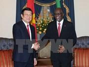 Vietnamese, Tanzanian Presidents hold talks