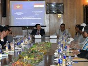 Vietnam promotes investment in Egypt's Aswan province
