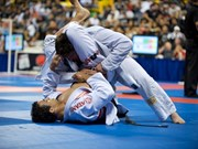 Vietnam clinches eight gold medals at Ju-Jitsu beach championship