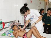 Dengue fever prevention in Gia Lai province inspected