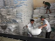 Vietnam, Thailand win bid to supply rice to Philippines