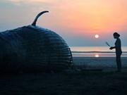Photo contest captures ocean glory