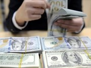 Vietnam's foreign currency reserves at record high