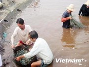 Kien Giang works to promote sustainable poverty reduction