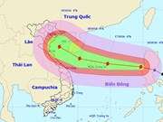 Localities prone to typhoon Sarika on full alert