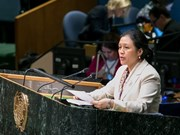Vietnam actively contributes to ECOSOC: official