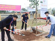 """Youths plant trees to show Vietnam-China """"forever green"""" amity"""