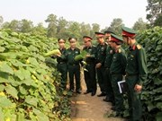 Vietnam, Laos armies exchange security defence experience