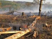 Course helps rangers combat wildlife crime