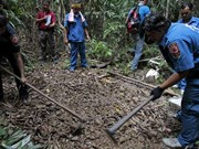 Mass graves found in Malay-Thai border