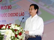 Vietnam starts work to tap potash salt mines in Laos