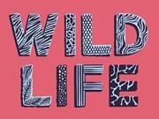 Film, music fest advocates for wildlife