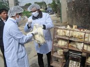 Ministry urges precautionary measures to control bird flu