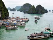 Quang Ninh bans construction of new tourist boats