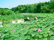 Lang Sen Wetland Reserve becomes Vietnam's 7th Ramsar site