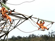 Expert urges Vietnam to reform energy sector